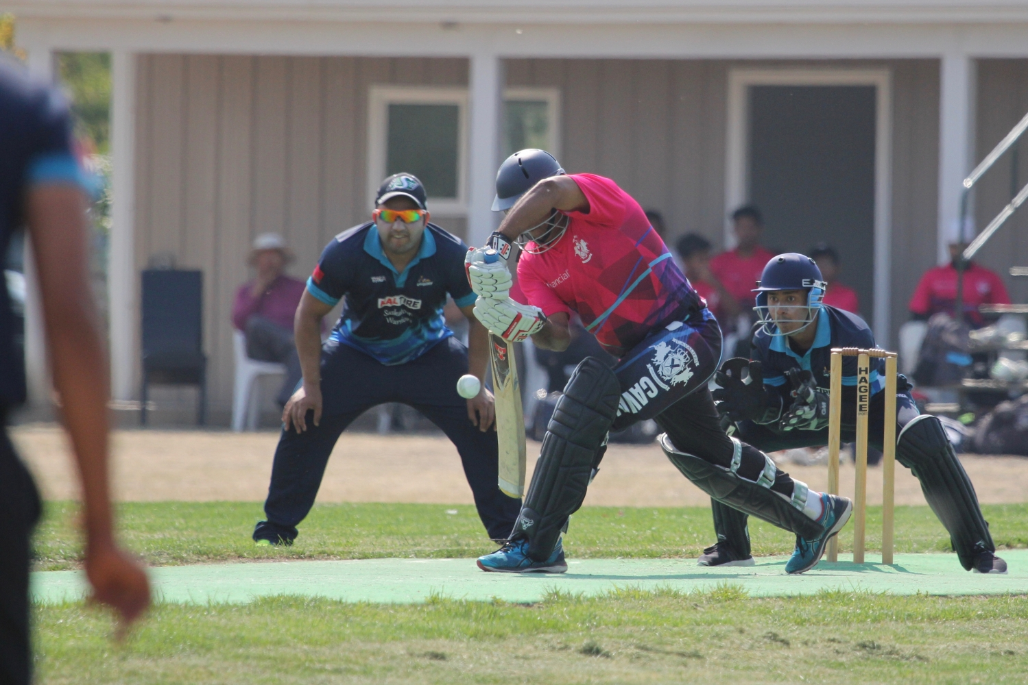 Saskatchewan provincial T20 Cricket finals this Sunday at Douglas Park in Regina