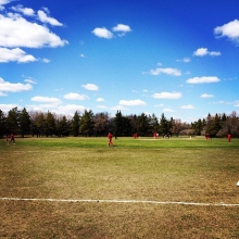 Sadly Regina's cricket team lost today against Sasktoon. #reginacricket #yqr.